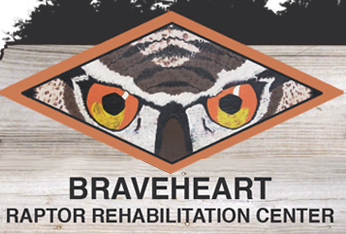 Braveheart Raptor Rehabilitation Center